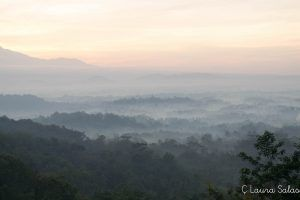 Borobudur en la niebla