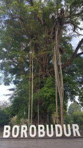 cartel Borobudur