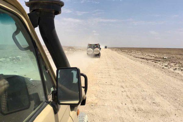 carretera del Serengeti